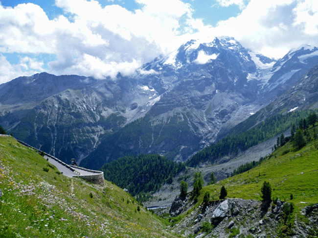 Photo of route leading up to Passo Stelvio in the Alps of Italy